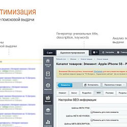/upload/resize_cache/iblock/089/250_250_2/CEO_aptimizatsiya.jpg